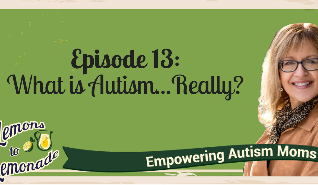 Episode 13 – What is Autism Really?