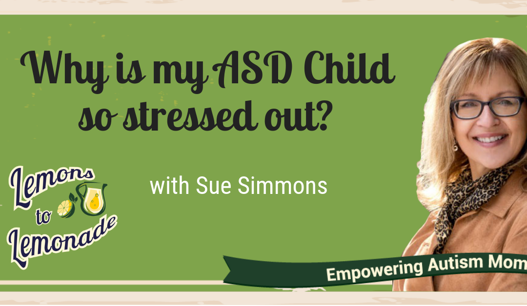 Ep. 15 – Understand why your ASD child is so stressed all the time and what can I do about it